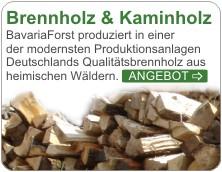 Kaminholz regensburg
